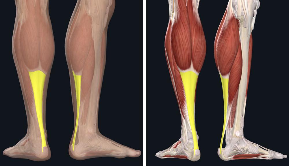 fájdalom, ha séta ad a csípőízületre fórum a térd ízületi gyulladás kezelésére