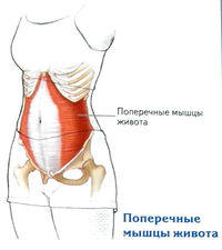 állítsa le a térd artrózisát 2 fokkal mozdulatlan ízületi fájdalmak és más okok