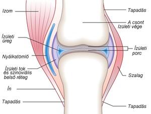 a csípőízületek második fokozatának ízületi gyulladása