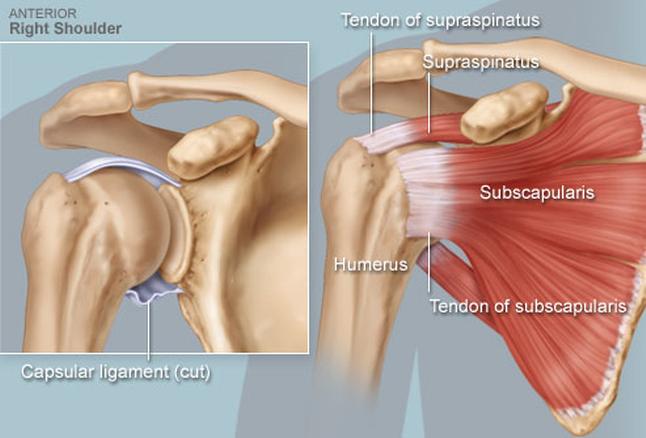 váll fájdalom sérülés boka artrózis töréskezelés után