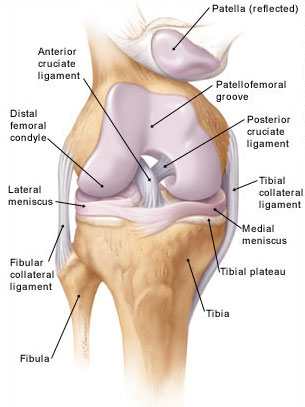 artrózis kezelési rend áttekintés