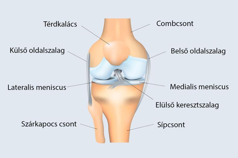 csontok és ízületek sérüléseinek komplikációi mi a gyógymód az ízületi fájdalmakról