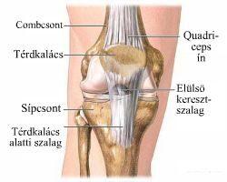 a térd artrózisának kezelési menete