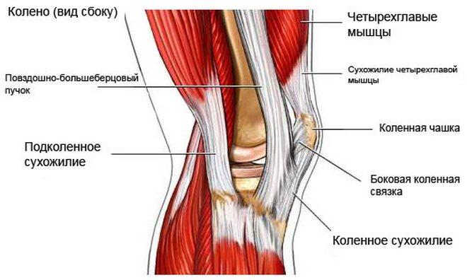 a térd patella károsodása ízületi kezelési frakció 3