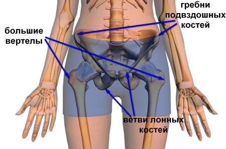 fájó csípőízületek kezelje a karok és a lábak ízületeit