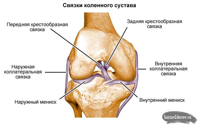 artritisz artrózis méhkezelés közös kenőcs nove élet áttekintések