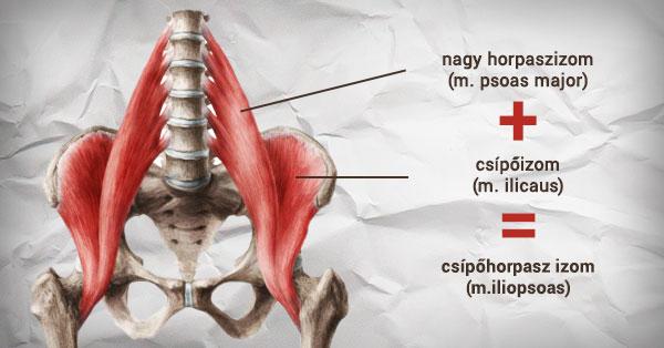 hogyan kell kezelni a vállízület miozitiszt a boka fájdalma ugráskor