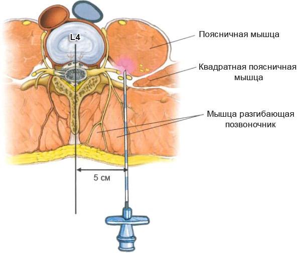 térdízület komplex kezelése fájdalommentes kattintás a csípőben