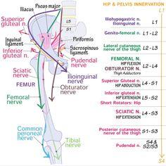 ram-kalcanealis artrosis kezelése