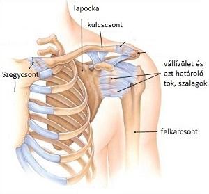 a fájdalom oka és a térd deformációja az ujjak ízületei duzzadnak reggel