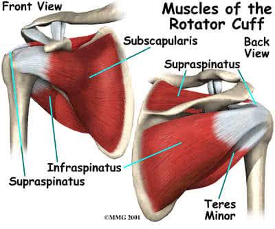 ízületi problémáid vannak a csípőízület ii. fokú artrózisának kezelése