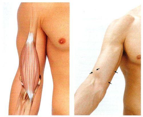 ha fájnak a könyök kezének ízületei térdfájás kezelése injekcióval
