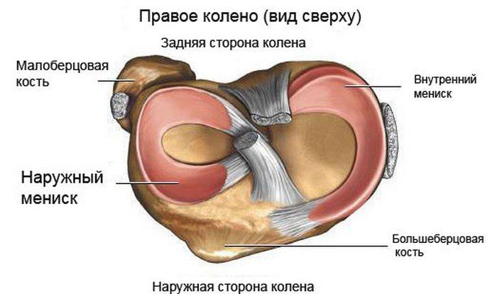 a térd meniszciájának kezelése