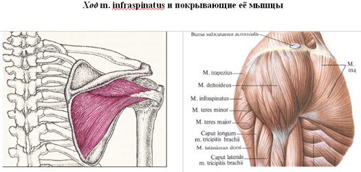 Melyik testrészed fáj? Megmondjuk, mi az oka - Blikk Rúzs